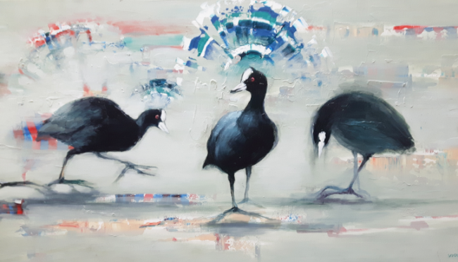 2019 Coot  - detail