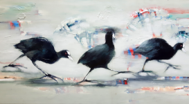 2019 Coot  (detail)