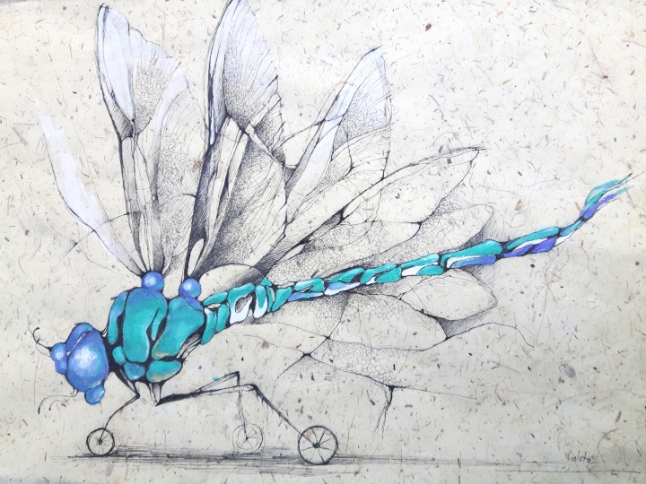 2019 Dragonfly 45x65
