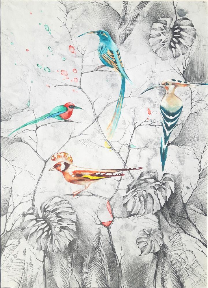 2019 Birds of Paradise 55 x 80 cm