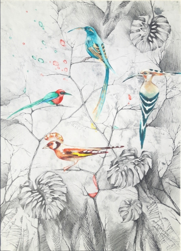 2019 Birds of Paradise 55 x 80 cm