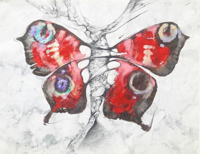 2020 Butterfly 80 x 55 cm